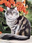 Кот в саду купить