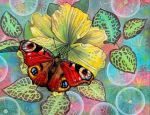 Бабочка купить