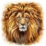 Лев купить