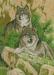 Пара волков купить
