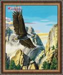 Горный орел купить