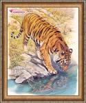 Тигр у реки купить